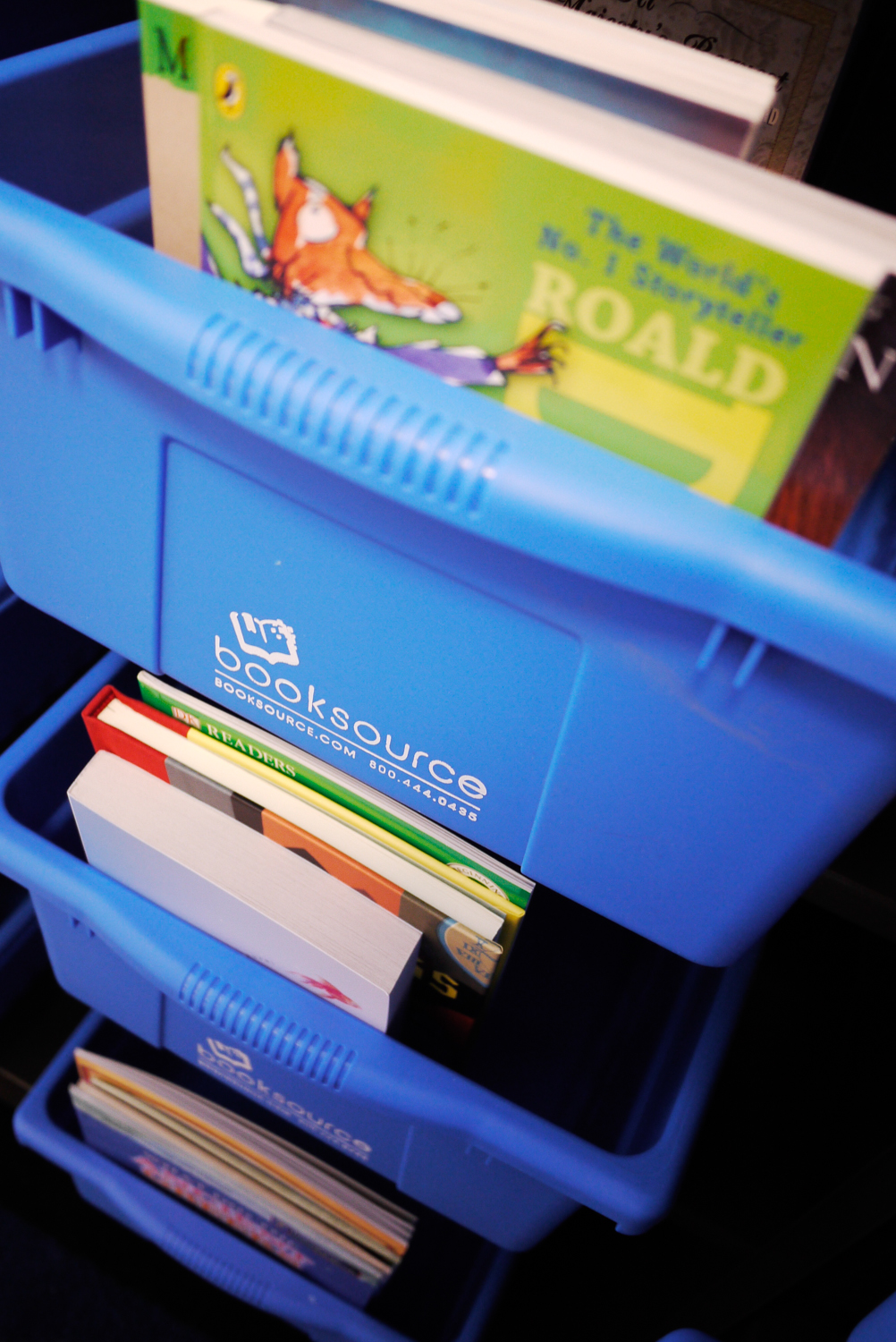 Blue Bin Book Collections