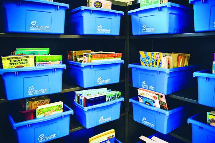 Building Blocks - Blue Bin Classroom Library Organizers
