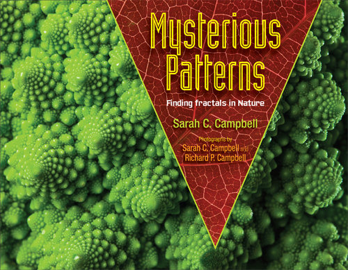 Mysterious Patterns - Finding Fractals In Nature