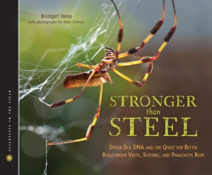 Stronger Than Steel - Bridget Heos