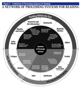 A Network of Processing Systems for Reading