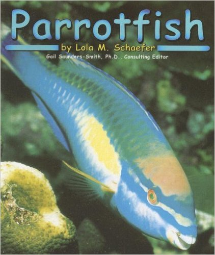 Title for Small Group Instruction: Parrotfish