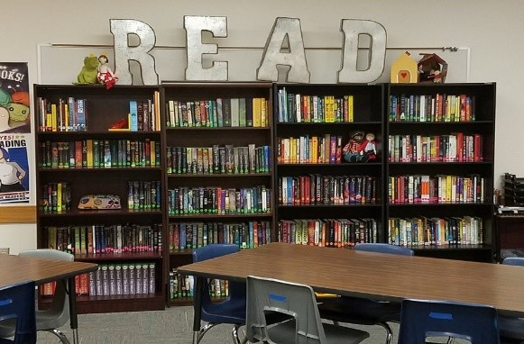 Outstanding Managing A Classroom Library A Carefully Curated Collection Home Interior And Landscaping Spoatsignezvosmurscom