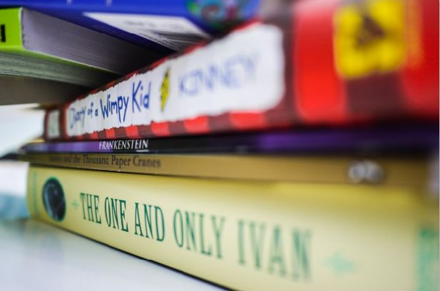 Feeling Alone As Opportunity Gap Widens >> The Reading Achievement Gap Why Do Poor Students Lag Behind Rich