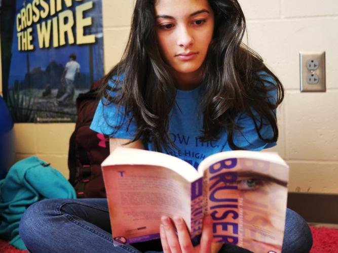 choice reading instead of whole class novel